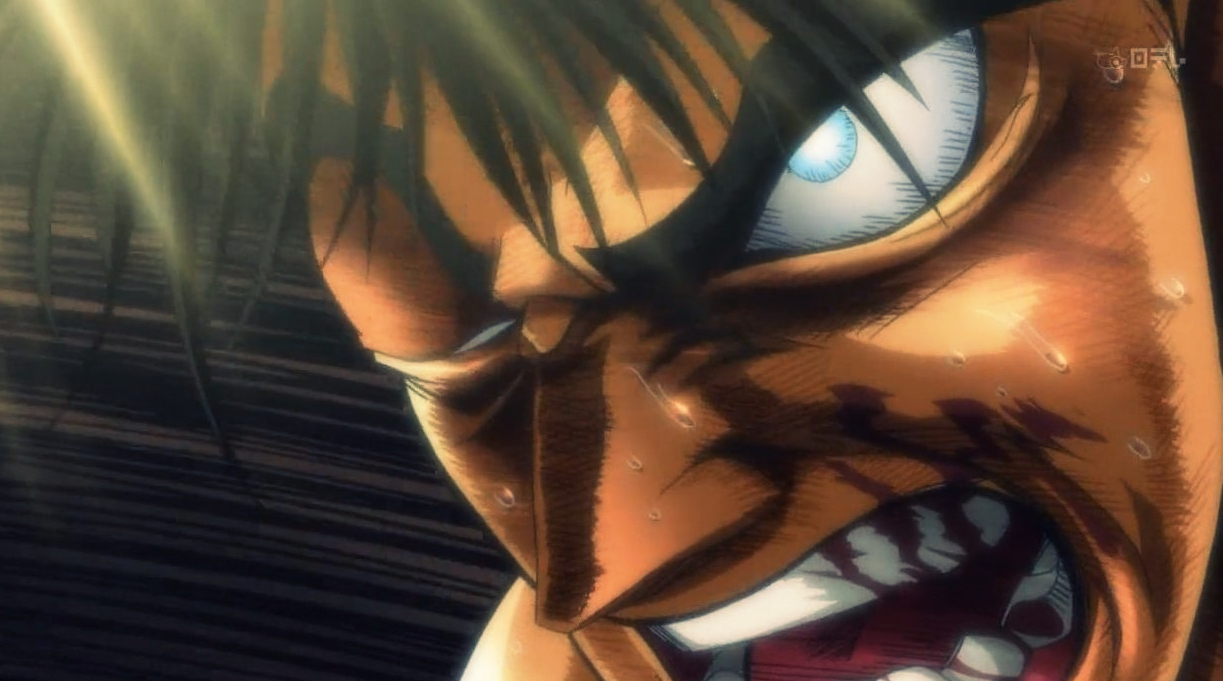 ippo003-optimized